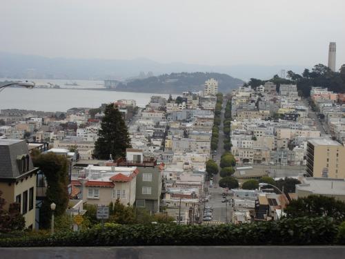 """""""区画されたキレイなサンフランシスコの街</p"""