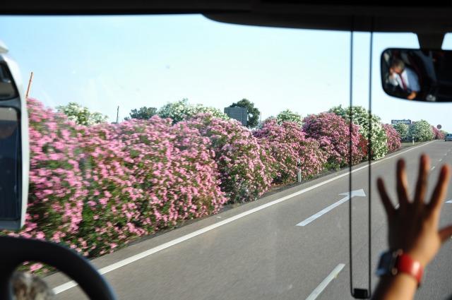 """""""高速道路からの風景</p"""