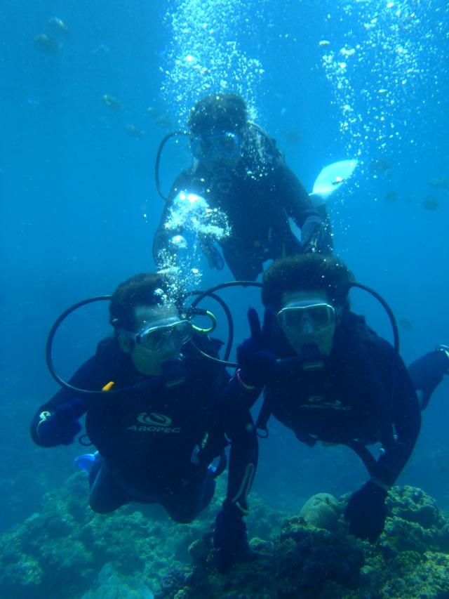 青の洞窟 体験ダイビング+熱帯魚餌付け