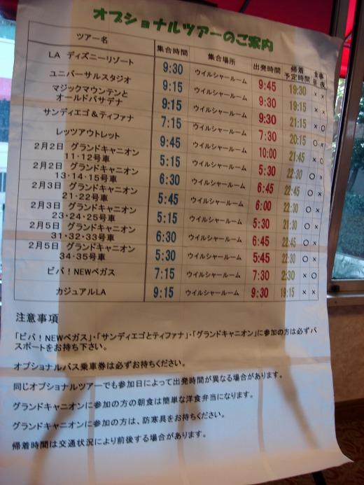 """""""オプショナルツアーの予定</p"""