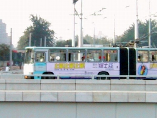 電線があるバス